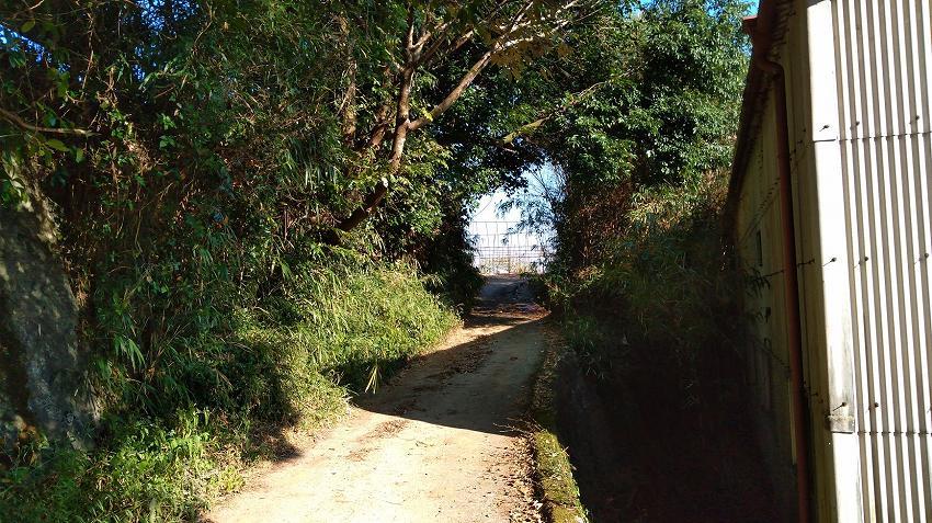 東向寺への道