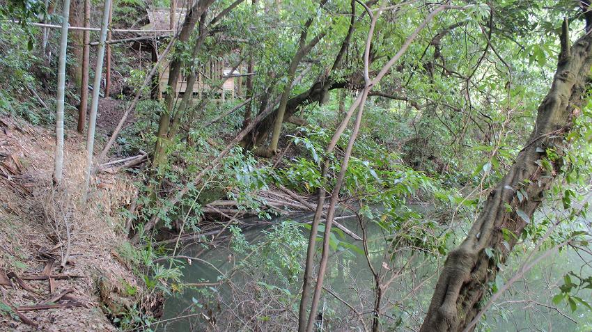 志徳寺の池横ルート