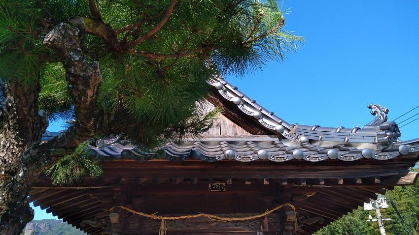 岩隣寺 松と屋根